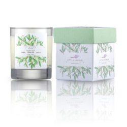 Eνυδατικό, αρωματικό κερί με άρωμα ελαιόλαδο, monoi Ταϊτής- Olive Oil Monoi soya candle
